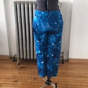 Ann Taylor Pants - Ann Taylor pants size 2 NWT